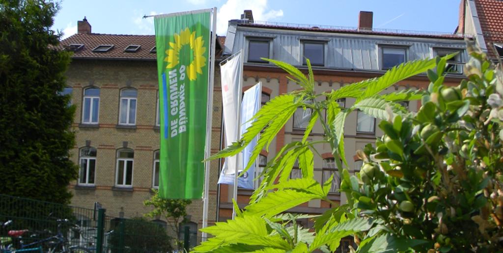 Interview: 5 Fragen an Einige Autonome Blumenkinder aus Göttingen