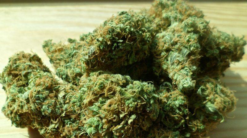 Deutschland: Medizinisches Cannabis nur für Auserwählte