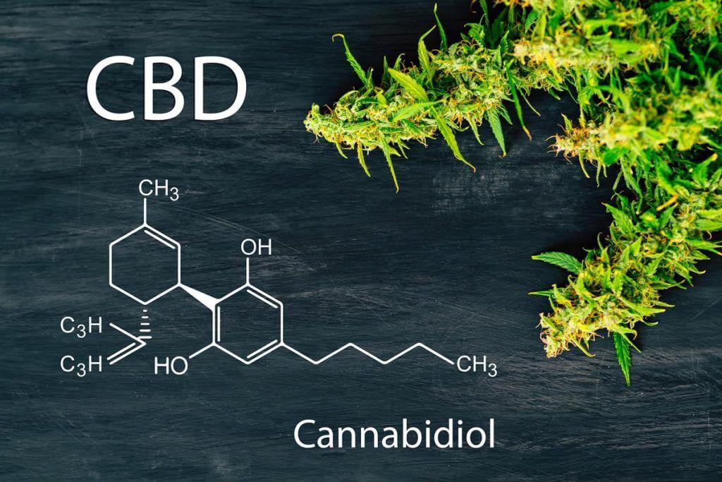 Was ist CBD und wie steht es um die Legalisierung?