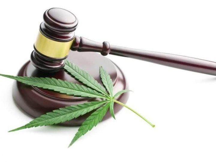 Gericht untersagt mit CBD angereicherte Produkte