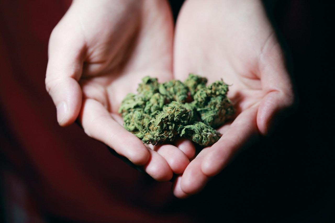 Medizinisches Cannabis bei Autismus