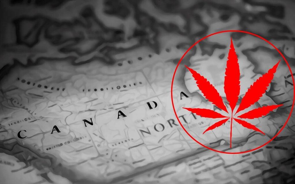 Cannabis-Überangebot