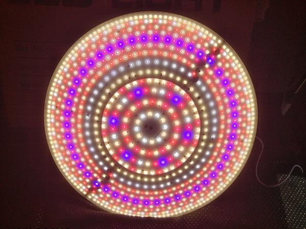 Beleuchtung: wie geht das und welches Leuchtmittel ist das Beste?