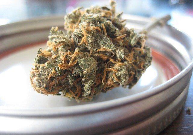 CBD bei übermäßigem Cannabiskonsum