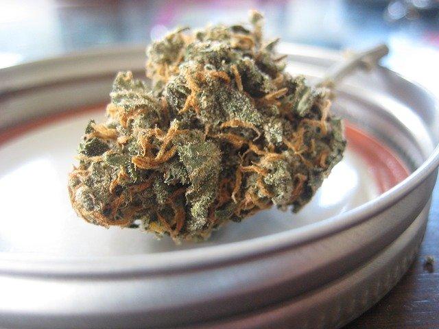 CBD hilft bei übermäßigem Cannabiskonsum