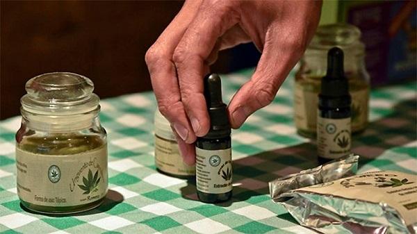 Eigenanbau von medizinischem Cannabis