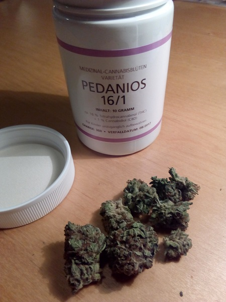 Zunkunf von Cannabis